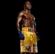 AD1 - Adonis Stevenson Boxing DVD Career Set