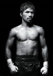 P35 - Manny Pacquiao Boxing  Dvd Career Set