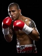 P09 - Miguell Cotto Boxing Dvd Career Set
