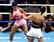 Mia St John Boxing Dvd Career Set