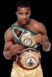 P102 - Michael Moorer Boxing Dvd Career Set