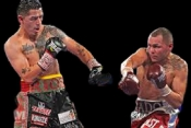Mike Alvarado Boxing Dvd Career Set