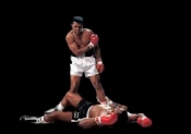Muhammad Ali Boxing Dvd Career Set