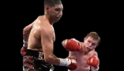 Saul Alvarez Boxing Dvd Career Set