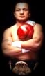 P29 - Tony Lopez Boxing Dvd Career Set