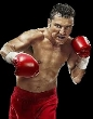 P11 - Oscar De La Hoya Boxing Dvd Career Set