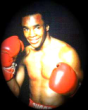 P27 - Sugar Ray Leonard Boxing Dvd Career Set